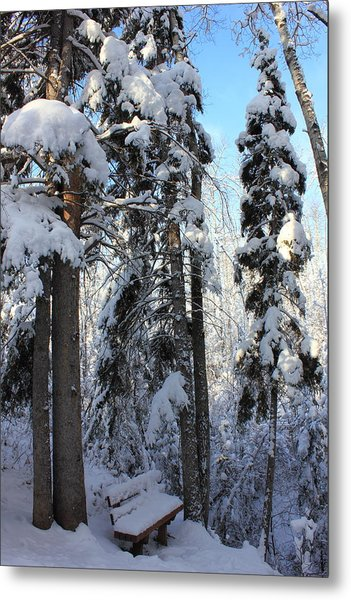 The Bench In Winter Metal Print