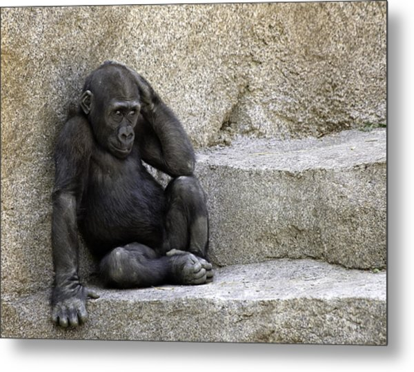 The Big Question Metal Print