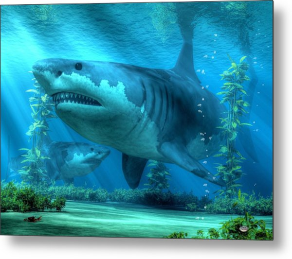 The Biggest Shark Metal Print