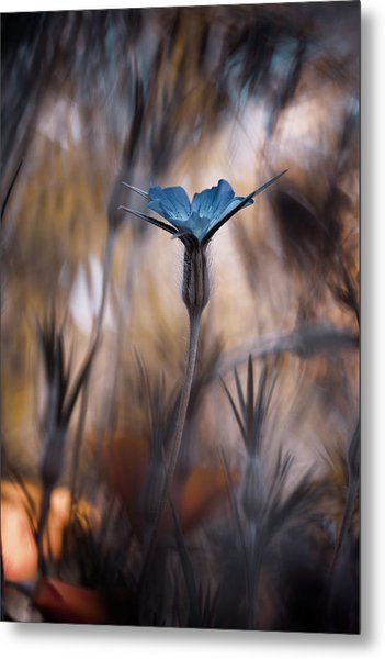 The Blue Crown Metal Print by Fabien Bravin