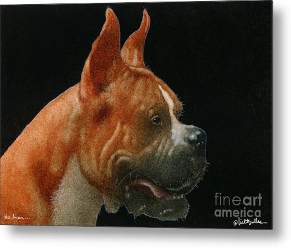 The Boxer... Metal Print by Will Bullas