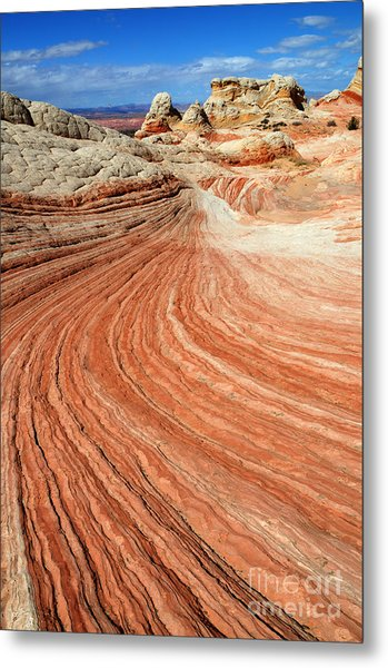 The Brilliance Of Nature 3 Metal Print