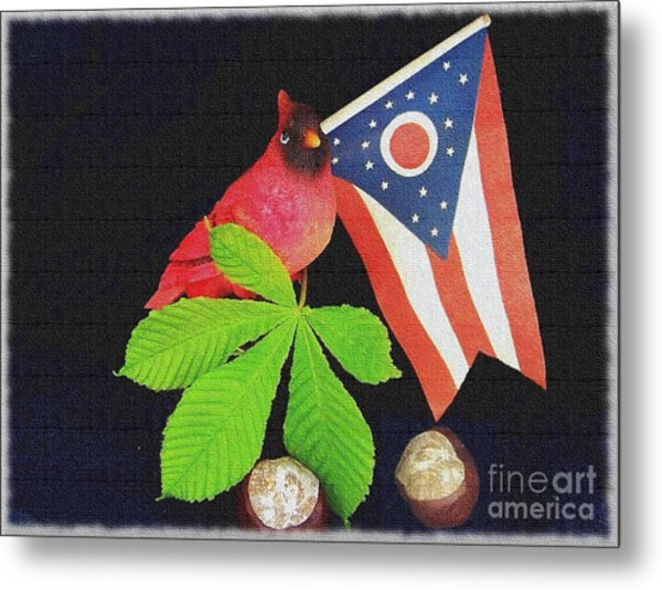 The Buckeye State Metal Print