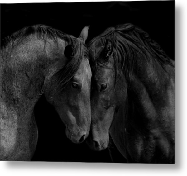 The Calm In Black And White Metal Print