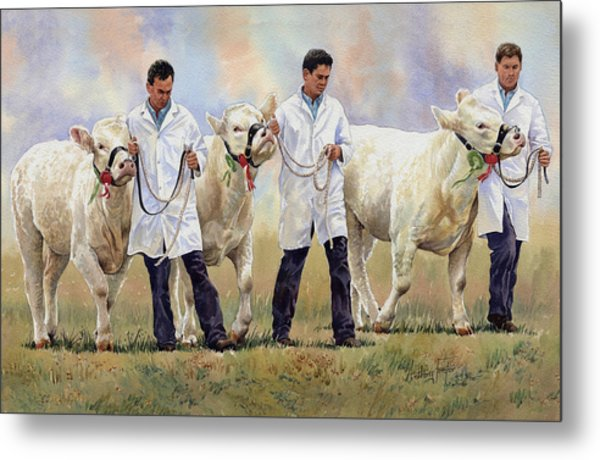 The Champions Metal Print by Anthony Forster
