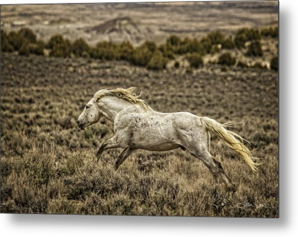 The Chaperone Metal Print