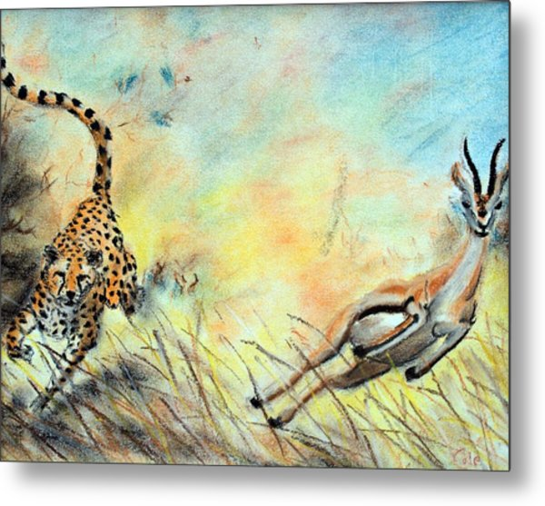 The Chase Is On Metal Print by Nathan Cole