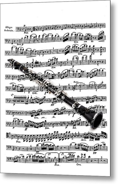 The Clarinet Metal Print