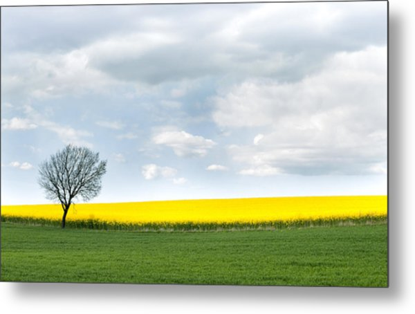 The Colors Of Spring Metal Print