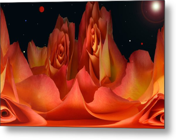The Creation Of Rose. Metal Print by Terence Davis