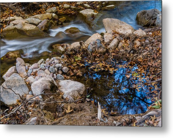 The Creek And The Quiet Pool Metal Print