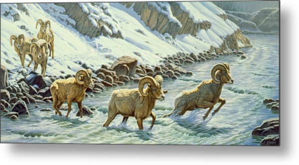 The Crossing - Bighorn Metal Print