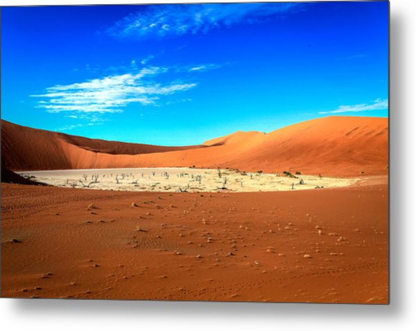 The Deadvlei Metal Print