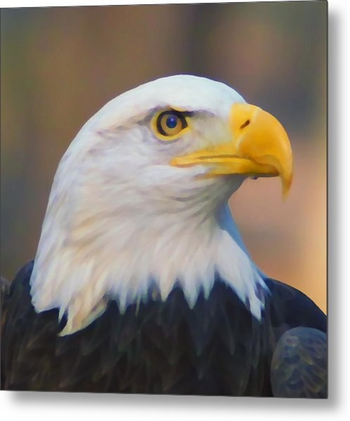 The Eagle Has Landed Metal Print