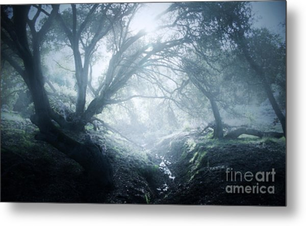 The Ents Are Going To War Metal Print by Kyle Walker