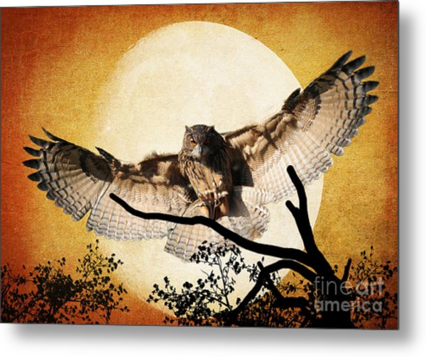 The Eurasian Eagle Owl And The Moon Metal Print