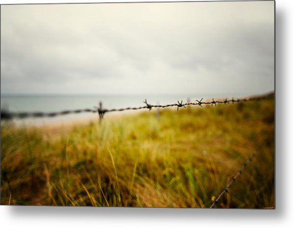 The Fence Metal Print