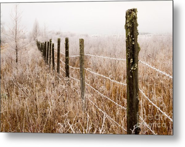 The Fence Still Stands Metal Print