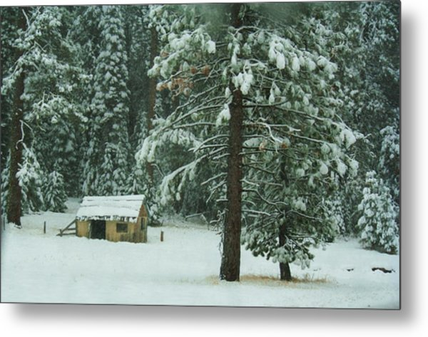 The First Snowfall Metal Print