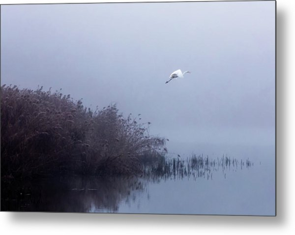 The Flight Of The Egret Metal Print