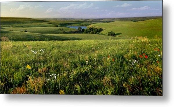 The Kansas Flint Hills From Rosalia Ranch Metal Print