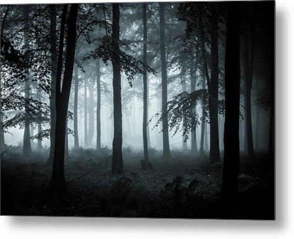 The Fog Metal Print by Ian Hufton