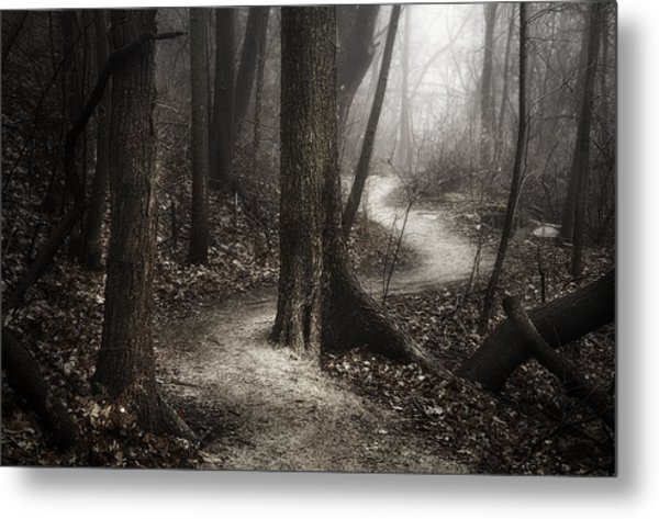 The Foggy Path Metal Print