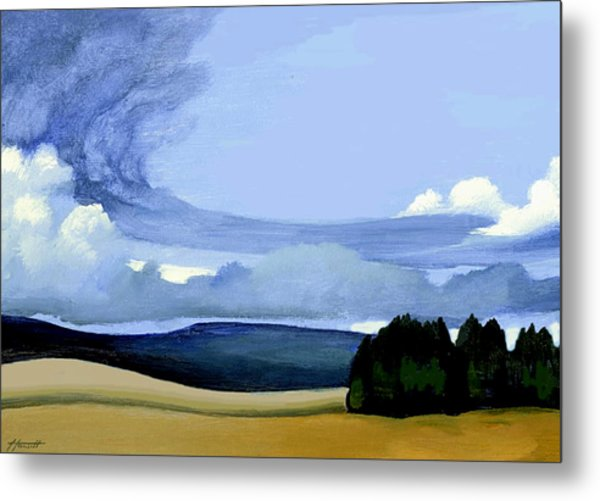 The Front Metal Print by Patricia Howitt
