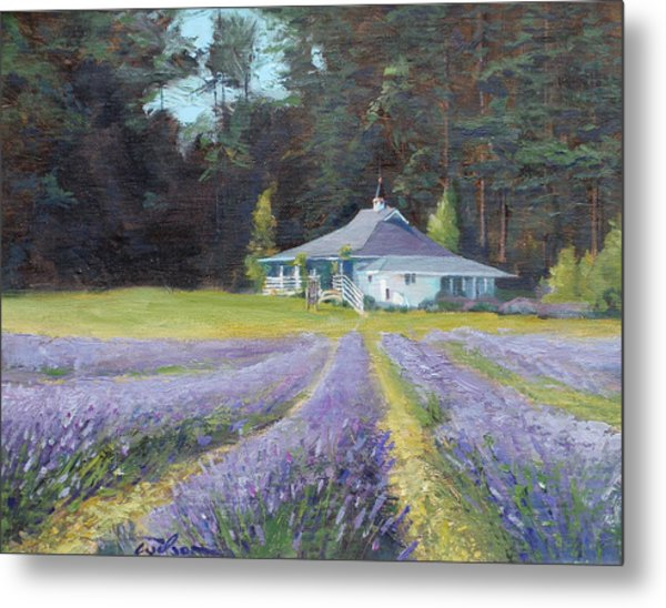 The Gatehouse Store Lavender Farm Metal Print by Ron Wilson