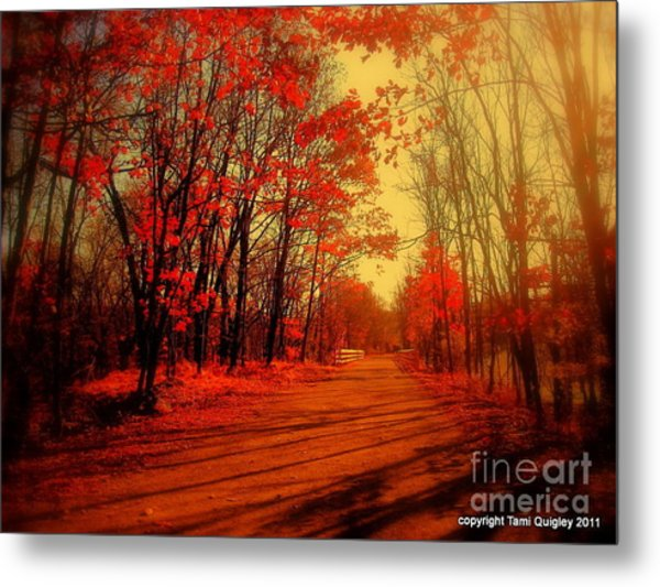 The Ginger Path Metal Print