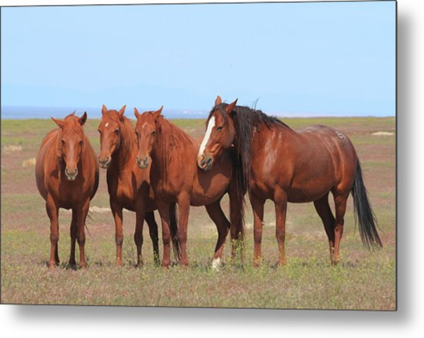 The Girls Club Metal Print by Gene Praag