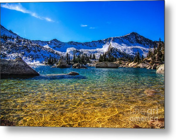 The Gold Lake Bottom Metal Print by Mitch Johanson