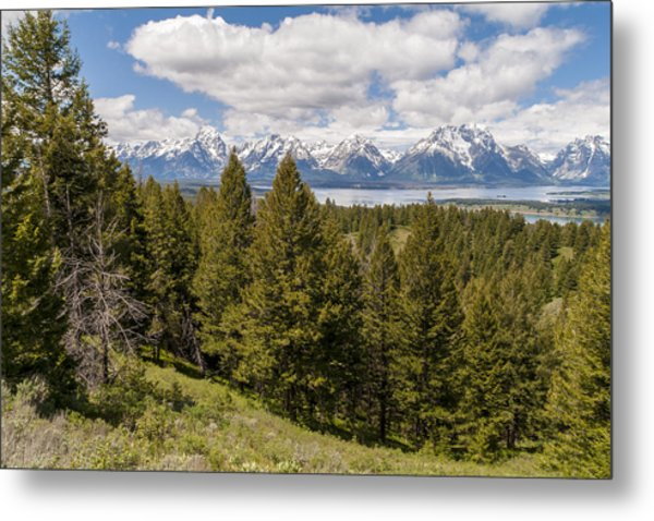 The Grand Tetons From Signal Mountain - Grand Teton National Park Wyoming Metal Print
