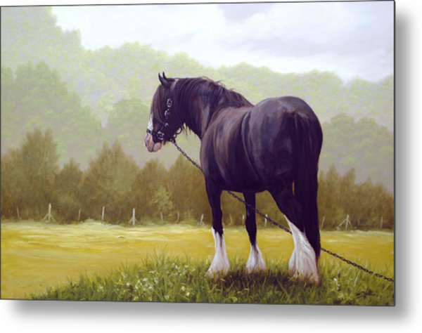 The Grass Is Greener  Metal Print