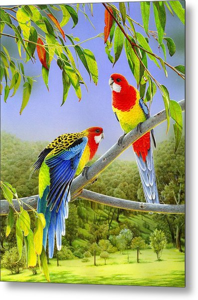 The Happy Couple - Eastern Rosellas  Metal Print