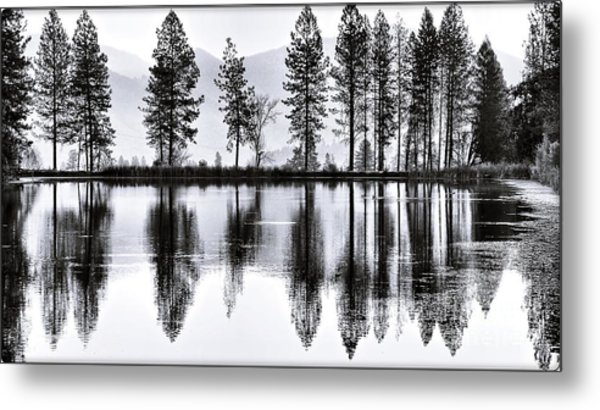 The Heron Pond Metal Print