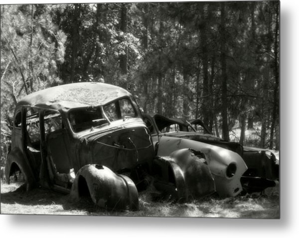 The Hiding Place Metal Print