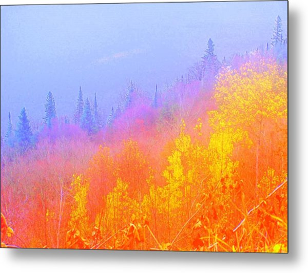The Hills Are Alive Metal Print