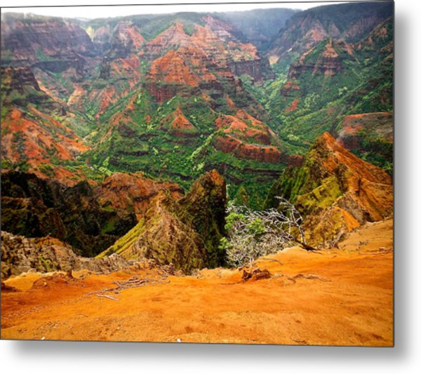The Hills Have Eyes Metal Print by Larry Spring