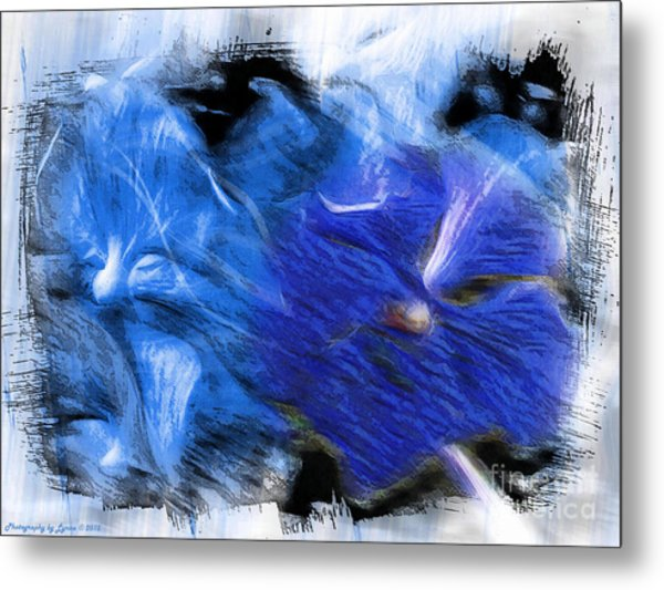 The Images Within Metal Print