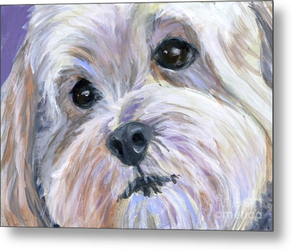 The Little White Dog Metal Print by Hope Lane
