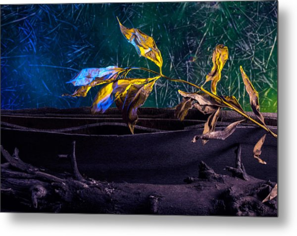 The Lonely Branch Metal Print