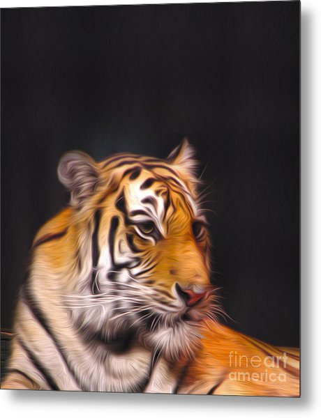 The Look Metal Print by Nur Roy