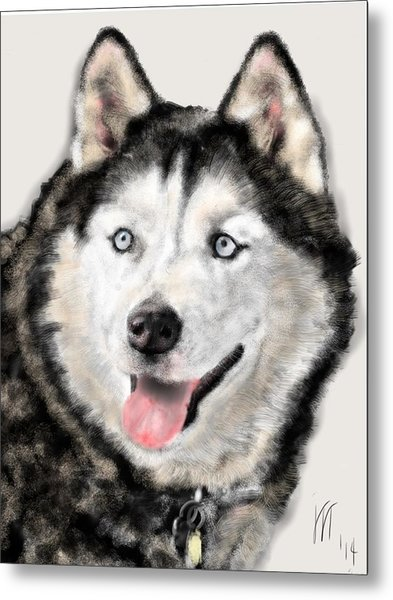 The Magnificent Husky Metal Print