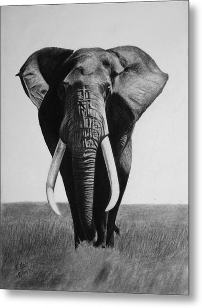The Magnificent One Metal Print