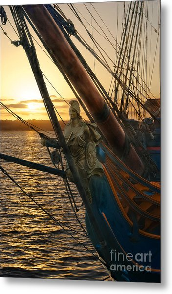 The Majesty Of The Ocean Metal Print