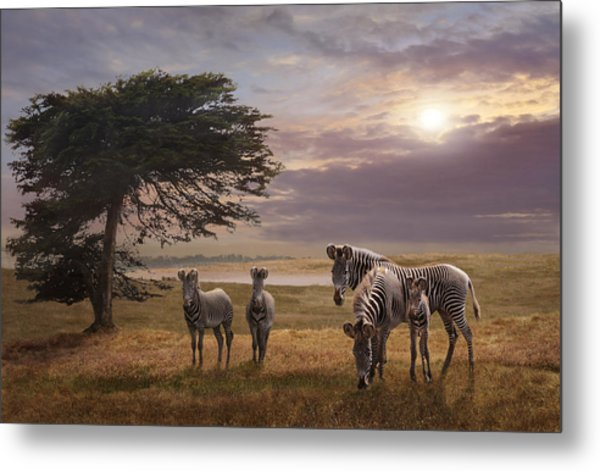 The Mane Event Metal Print