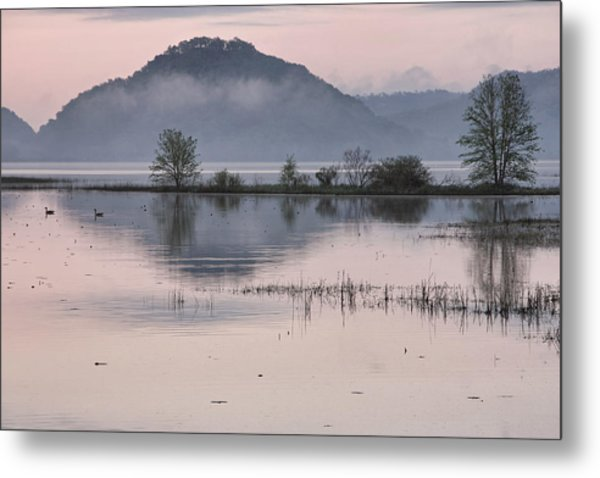 The Misty Mississippi Metal Print by Theo