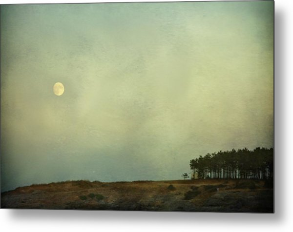 The Moon Above The Trees Metal Print