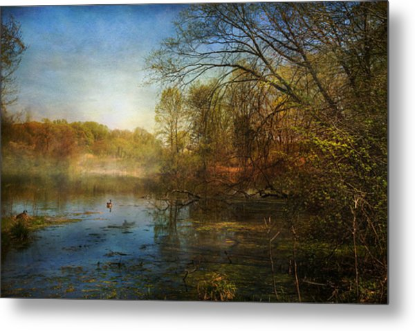 The Morning Begins Metal Print